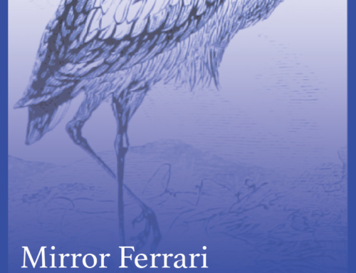 Jan 18th @ Lofi w/ Mirror Ferrari & Seaside Tryst – Seattle WA